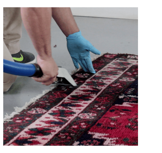 Best Rug Cleaning Cranbourne