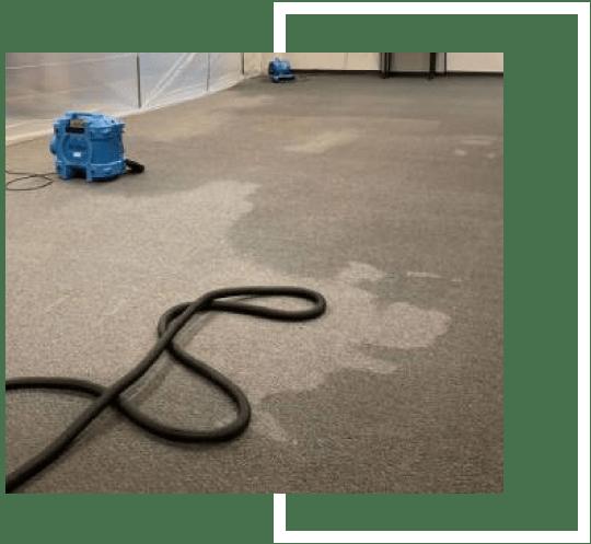 Water Damage Remediation Cranbourne
